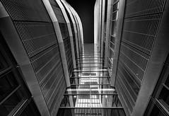 view to the roof (Der Hamlet) Tags: düsseldorf medienhafen scharzweiss linien fassade spiegelung skyscraper reflection urban kontrast glas stahl architektur