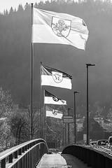 Bridge of Flags - December 2019 (Black & White) (boettcher.photography) Tags: sashahasha boettcherphotography boettcherphotos december dezember neckargemünd rheinneckarkreis badenwürttemberg 2019 friedensbrücke bridge brücke flagen flags blackwhite schwarzweiss schwarzweis monochrone