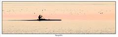 """Before Sunset"" (Patogaz29) Tags: kayak bretagne britany minimalisme highkey ef400mmf56lusm canoneos6d mer marin maritime"