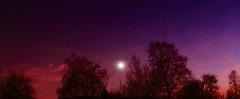Red Sunset_2019_12_04_0012m1 (FarmerJohnn) Tags: sunset auringonlasku punainen taivas red sky lateafternoon iltataivas taivaanranta pilvet clouds colors colorfull värikäs talvi winter december joulukuu suomi finland laukaa valkola anttospohja canoneos5dmarkiii canonef24105l40isusm canon 5d markiii juhanianttonen