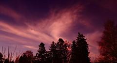 Red Sunset_2019_12_04_0011m1 (FarmerJohnn) Tags: sunset auringonlasku punainen taivas red sky lateafternoon iltataivas taivaanranta pilvet clouds colors colorfull värikäs talvi winter december joulukuu suomi finland laukaa valkola anttospohja canoneos5dmarkiii canonef24105l40isusm canon 5d markiii juhanianttonen