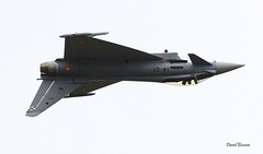 BAE EF2000 Thyphoon ~ 14-01 / C.16-31  Spain AF (Aero.passion DBC-1) Tags: 2017 meeting st dizier dbc1 david biscove aeropassion avion aircraft aviation airshow plane bae ef2000 thyphoon ~ 1401 c1631 spain af