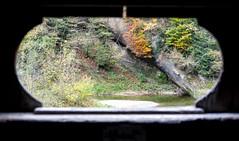 View from the Bridge (Bephep2010) Tags: 2019 7markiii alpha appenzell appenzellausserrhoden bridge brücke bäume fluss herbst ilce7m3 sel24105g schweiz sony stein steinar switzerland urnäsch autumn fall river trees ⍺7iii stgallen kantonappenzellausserrhoden