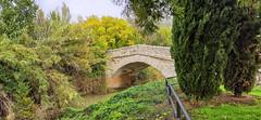 Puente de Tielmes - Madrid (Carlos SGP) Tags: españa es madrid tielmes puente rio tajuña viaverdedeltajuña 1637 xiaomi9pro xiaomi juandelatorre piedra pont river arquitectura