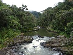 River at Ranomafana (Wavelength415) Tags: river