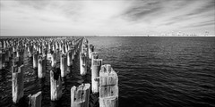 port-melbourne-3469-ps-w (pw-pix) Tags: water bay clouds pier piles piling wooden decayed dismantled deckremoved cliche melbournecliche cranes containercranes dock docks bw blackandwhite monochrome sonya7 irconvertedsonya7 850nminfrared ir infrared adaptedlens nikon142428afs nikkor1424mm128ged nikkor142428 nikon142428 princespier portphillipbay portmelbourne melbourne victoria australia peterwilliams pwpix wwwpwpixstudio pwpixstudio