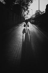 Süleymaniye/İstanbul (Official Fujifilm X-Photographer) Tags: photographer streetphotography minimalist backlight istanbulperspektifi travel hüseyinaldırmaz xpro3 fujifilmxpro3 fujiwalk görmepratiği blackandwhite monochrome fatih istanbul süleymaniye