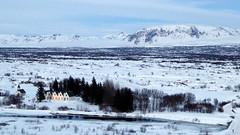 P1000650 (trevor.warry@gmail.com) Tags: iceland thingvellirnationalpark