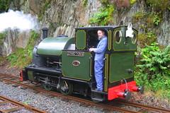 Edward Thomas at Abergynolwyn 04-07-2007 (Joseph Collinson) Tags: talyllyn narrowgauge engine railway track wales july 2007 summer tywyn