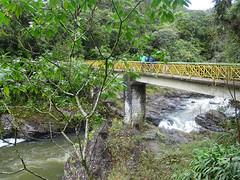 Ranomafana National Park (Wavelength415) Tags: bridge river