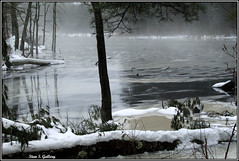 December - Foggy, overcast day on the pond (Stan S. Gallery) Tags: winter pond water ice icey wet wetreflections snow cold trees log reflections winterscape wintry frozen cove canonrebel outdoors nature landscape forest woods fog foggy mist misty branches shoreline shore murky