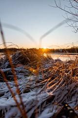 Short are the days. (A.Koponen) Tags: canon canonphotography eosr rf24105mmf40 hoya lseries suomi finland kuopio lake kallavesi sky sunset sunsetphotography sunsetsunrise nature naturephotography finnishnature finnishphotography