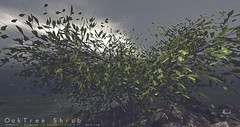 Litte Branch: Oak Tree Shrub (the.littlebranch) Tags: littlebranch lb homegarden landscaping sl secondlife animated landscape garden forest leaf seasonal season spring summer autumn fall winter equal10 shrub bush