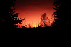 Red Sunset_2019_12_04_0009 (FarmerJohnn) Tags: sunset auringonlasku punainen taivas red sky lateafternoon iltataivas taivaanranta pilvet clouds colors colorfull värikäs talvi winter december joulukuu suomi finland laukaa valkola anttospohja canoneos5dmarkiii canonef24105l40isusm canon 5d markiii juhanianttonen