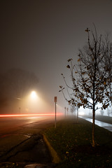 Foggy Tail-Lights (LostOne1000) Tags: night pentax2470f28edsdm foggy carlights pentaxlenses time darkness weather streetlights morning pentax road street transportation equipment camera groundvehicles fog car pentaxk1 carlighttrails photography cedarrapids iowa unitedstatesofamerica