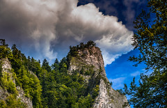 Dunajec Gorge - impression #1 (Andrzej Kocot) Tags: andrzejkocot adventure art action landscape landscapes creative clouds colors countryside colorful sky surreallandscape surreal sunlight skyline olympus omd outdoor poland polska forest photography pieniny fineart