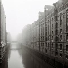 life after people (knipserkrause) Tags: fog hamburg film analog ilford delta yashicamat nebel