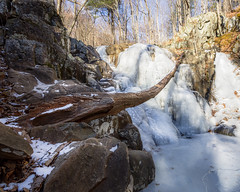 Frozen Rose River Waterfall (Vladimir Grablev) Tags: cascades falls bridge nature frost fall snow morning creek virginia low temperature outdoors ice temperatures waterfalls pool waterfall landscape view trunk trees nationalpark mountains tree formation shadows stream solid dead appalachian sun shenandoah scenic rocks winter river forest hiking trail january water angle cold icicles skylinedrive