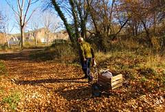 De vuelta a casa (kirru11) Tags: paisaje camino huerto otoño gente hombre santiago hojas rocas peñas árboles carro quel larioja españa kirru11 ana echebarria canonpowershot