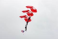 EDWU3774.jpg (edwjhwu) Tags: abbotsfordinternationalairshow skyhawksparachuteteam airshow cfskyhawks airplane aviation