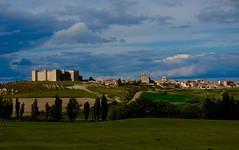 MONTEALEGRE :  TIERRAS DE CASTILLA (marthinotf) Tags: tierrasdecastilla montealegre valladolid castillo paisaje cereal arboles alamos cielos nubes
