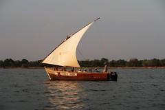 2019-110128 (bubbahop) Tags: 2019 africatrip victoriafalls zimbabwe zambezi river sunset cruise part3 gadventures boat
