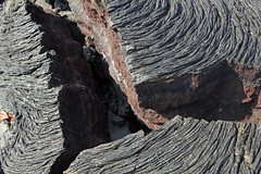 IMG_0011 (xd_travel) Tags: 2014 galapagos mssamba