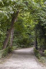 Athens National Garden (colinemcbride) Tags: greece athens hellas athena city urban tourist national garden