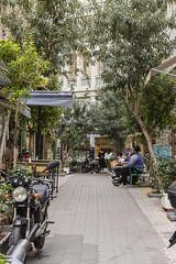 Athens (colinemcbride) Tags: greece athens hellas athena city urban tourist national garden