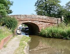 20190716 Warm-coloured brick bridge (rona.h) Tags: birminghamcanalnavigation shropshireunioncanal ronah 2019 july patience