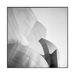 auditorium • los angeles, california • 2018 (lem's) Tags: disney concert hall auditorium architecture los angeles california californie rolleiflex t