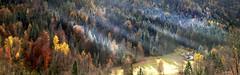 a kind of magic (art & mountains) Tags: alpi alps ossola valleanzasca hiking borghi villaggi bosco alberi fall natura silenzio contemplazione vision dream spirit walser baite pietra legno delicato leggerezza soffio