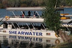 2019-110119 (bubbahop) Tags: 2019 africatrip victoriafalls zimbabwe zambezi river sunset cruise part3 gadventures boat