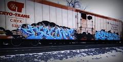 (timetomakethepasta) Tags: scum stoe cdc ba fgs freight train graffiti art cryo cryotrans cryx reefer