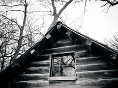 In Reflection (Demmer S) Tags: window trees reflection reflect building reflecting cabin reflective lines shapes repetition parallel repeating treebranches branches nature outside windowview windowshot lookingup reflections tree branch outdoors windows glass wooden wood house woods bw monochrome blackwhite blackandwhite blackwhitephotos blackwhitephoto