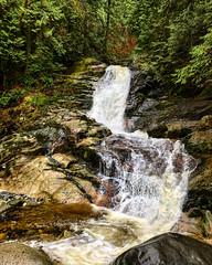 Splish-Splash (Pennan_Brae) Tags: tree water trees forest coquitlam britishcolumbia nature river waterfall