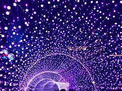 Taiwan/Taipei 台灣/台北 (191211)i (波記338) Tags: taiwan taipei newtaipeicity banqiao 台灣 台北 新北市 板橋 新北市歡樂耶誕城 新北市耶誕城 新北市耶誕歡樂城 新北耶誕城2019 新北歡樂耶誕城