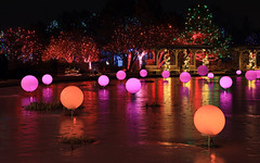 It's beginning to look a lot like Christmas (oldogs) Tags: light holiday christmas reflection ice frozen denver pond winter