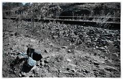 Coal alongside a disused Railway Track (John Panneman Photography) Tags: williamsdale act nsw actnswborder farm rural sheep train rail track sign crossing australia monaro panneman nikon d610 cooma bombala queanbeyan coal pm parliament