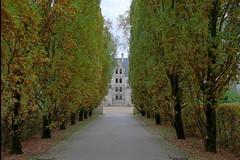 Arrivée à Azay-le-Rideau (hervétherry) Tags: france centrevaldeloire indreetloire azaylerideau canon eos 7d efs 1022 chateau castle loire allée perspective arbre tree automne autumn