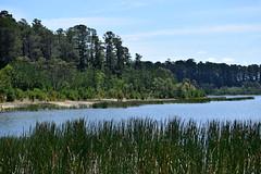 Stony Creek Reservoir (Linda M Hurley) Tags: water dam lake reservoir victoria australia