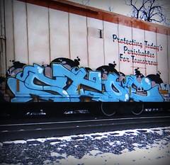 (timetomakethepasta) Tags: stoe stoer cdc ba freight train graffiti art cryo cryotrans cryx reefer scum