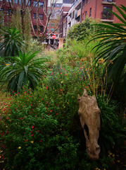 DSC_0816 Phoenix Gardens 3, 6x4.5 (mikeinfleet) Tags: london covent garden sculpture photo explorers londonphotoexplorers