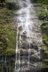 Los Tilos Waterfall (PLawston) Tags: la palma canary islands spain los tilos cascada waterfall laurisilva laurel forest