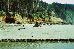 (Alyson Bowen) Tags: kodakfilm ektachromee100 e100 crossprocessed 35mmfilm oregoncoast beach westcoast sand nikon nikonfilmcamera nikonn75
