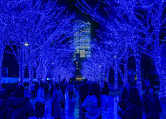 Blue cave (yasky0786) Tags: blue illumination shibuya sony asiafavorites happyplanet tokyo japan light