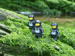 Scene: - Three Blacktron Astronauts. (Working hard for high quality and good work.) Tags: seaweed blacktron theme space lego classic fiction science characters toy photography