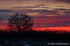 December 5, 2019 - Beautiful sunrise. (Bill Hutchinson)