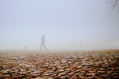 Foggy Morning (Marija Mimica) Tags: fog street silhouette people dog stone
