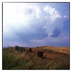 Tuscany sky (*Irshat*) Tags: italy mediumformat landscape hasselblad tuscany planar fujiprovia100f provia100 503cx planar80mmf28